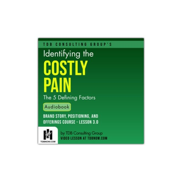 Identifying the Costly Pain Audiobook